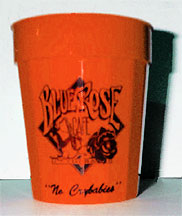 Orange Blue Rose Cafe Cup