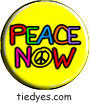Peace Now Political Magnet (Badge, Pin)