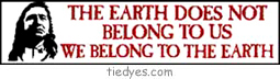 The earth Does Not Belong To Us  We belong to the the earth Bumper Sticker